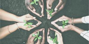 Marketing socioambiental: por que aplicar?